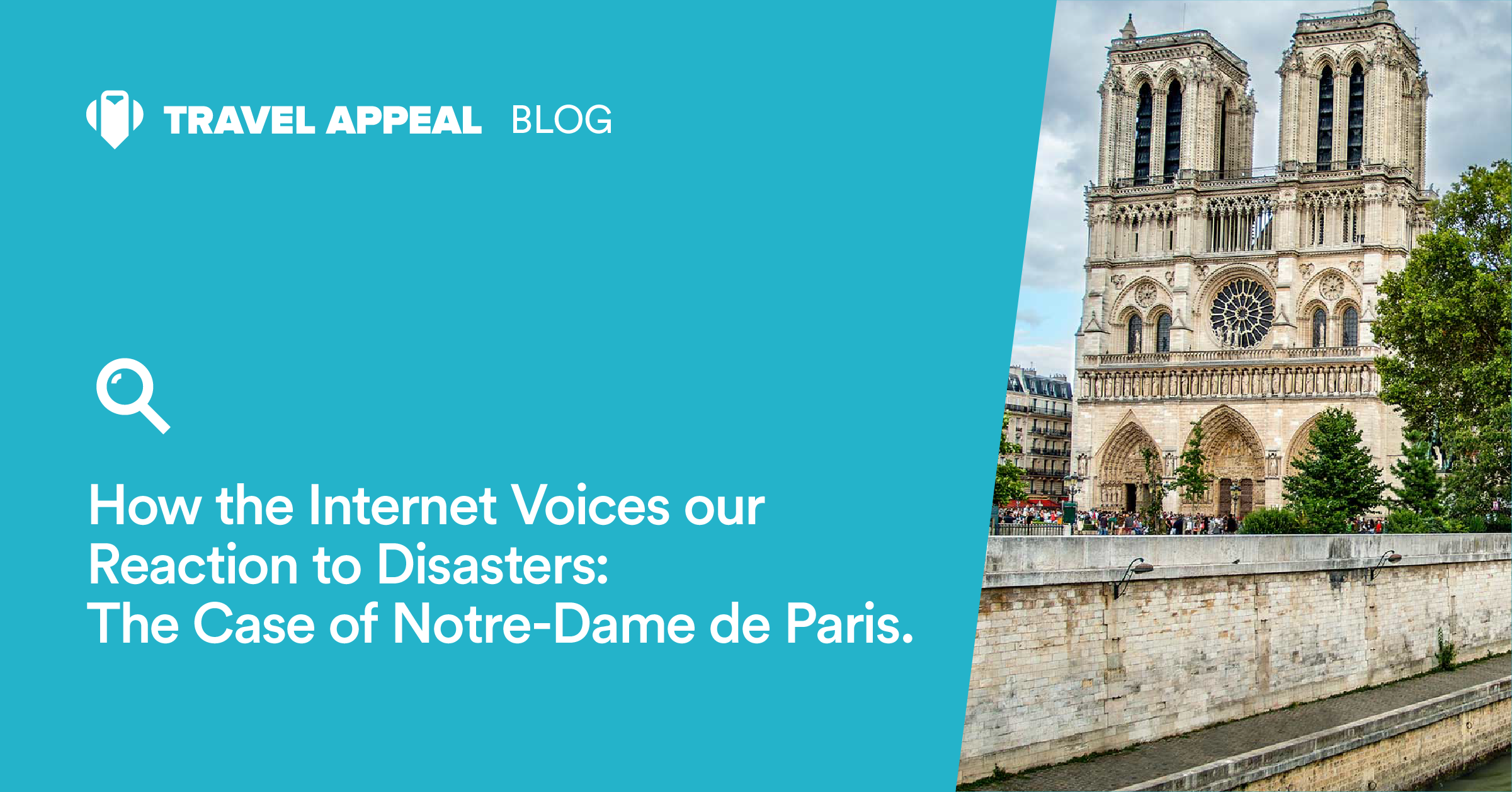 How the Internet Voices our Reaction to Disasters: The Case of Notre-Dame de Paris